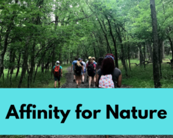 affinity for nature