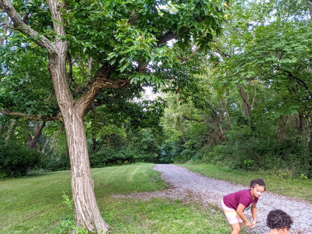 Unity Village trail to explore