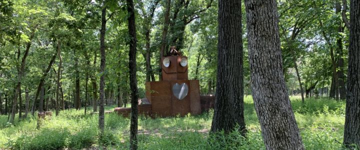 The Wild Robot in the Woods